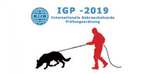 IGP2019-след