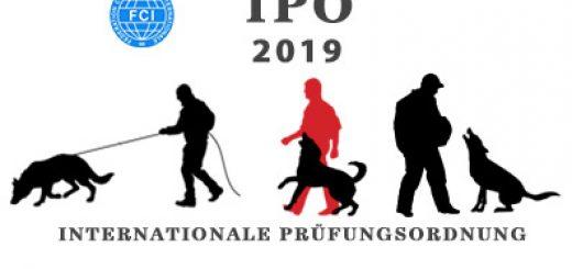 Изменения в ИПО 2019
